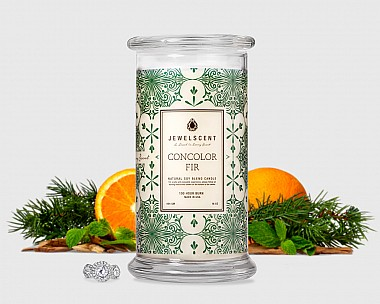 Concolor Fir Candle