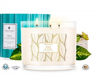 Trio Fern and Teak Jewelry Candle