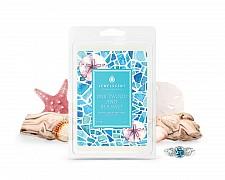 Driftwood & Sea Salt Jewelry Wax Tarts